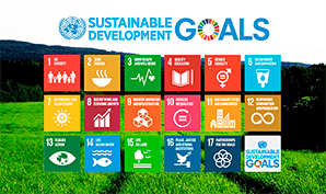 UN Sustainable Development Goals and the Nordic Swan Ecolabel